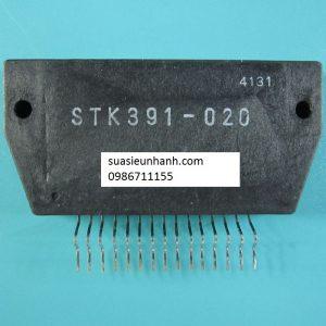 STK391-020